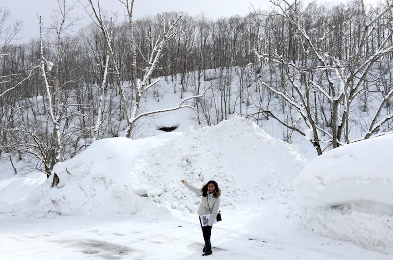 Niseko Hirafu Snowing